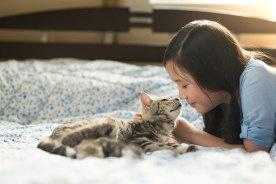 知っていれば防げる!!ペット可マンションで猫ちゃんが起こしがちなトラブル5選