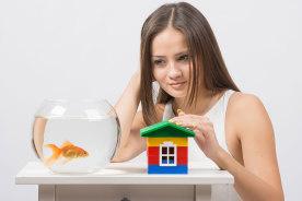 「ペット不可」は魚も禁止?賃貸物件で熱帯魚を飼うときの5個の注意点