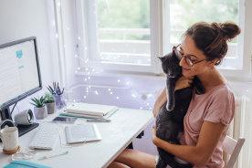 にゃんこ達に癒やされる!猫好きなのに飼えない人のための猫ゲームアプリ7個