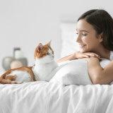 一人暮らしでもペットは飼える!不在がちでも飼いやすいおすすめペット5選